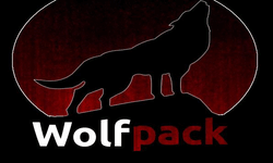 Wolfpack Dota 2