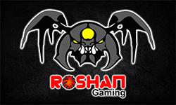 ROSHAN GAMING