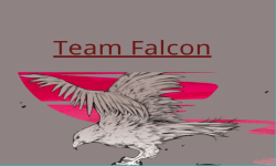 Team Falcon