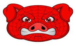 Spider Pigzs