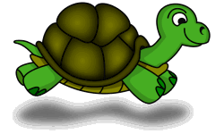 Turtlemasters